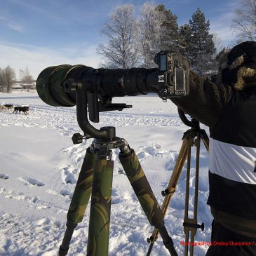 Våra fotografer